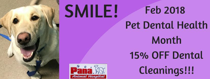 Pet Dental Health Month 2018